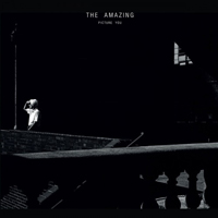 the amazing-picture-you