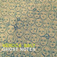 verucasalt-ghost-notes